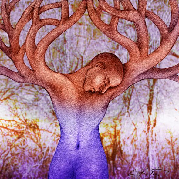 Wisdom Tree- Warming