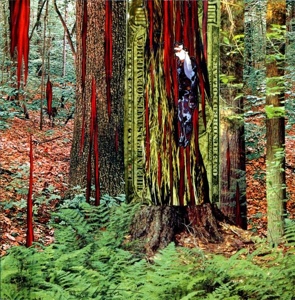 trees-soil-ecology