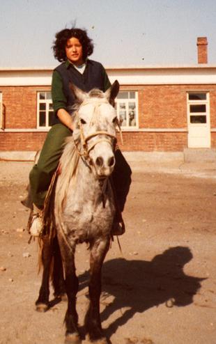 Hinton-Mongolian-Pony