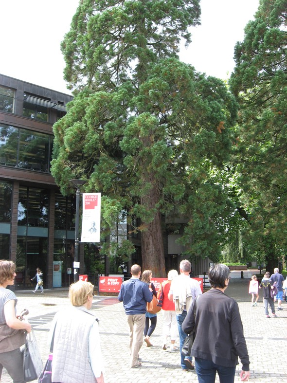 George Boole Library, UCC Campus