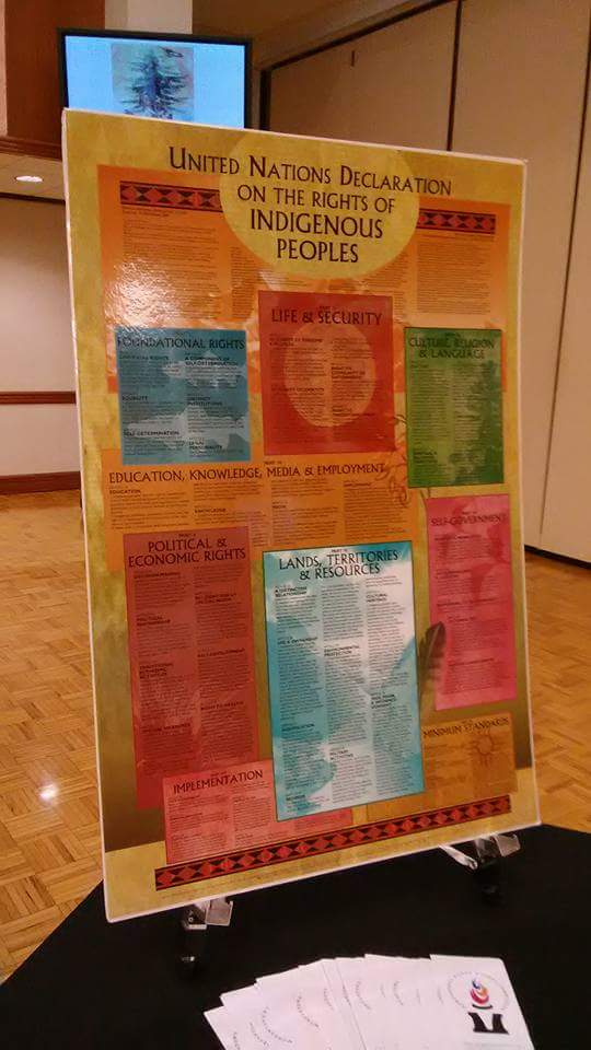 Poster-United Nations Declaration on the Rights of Indigenous Peoples